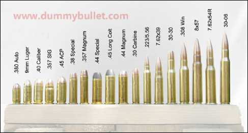 Display ammo dummy rounds